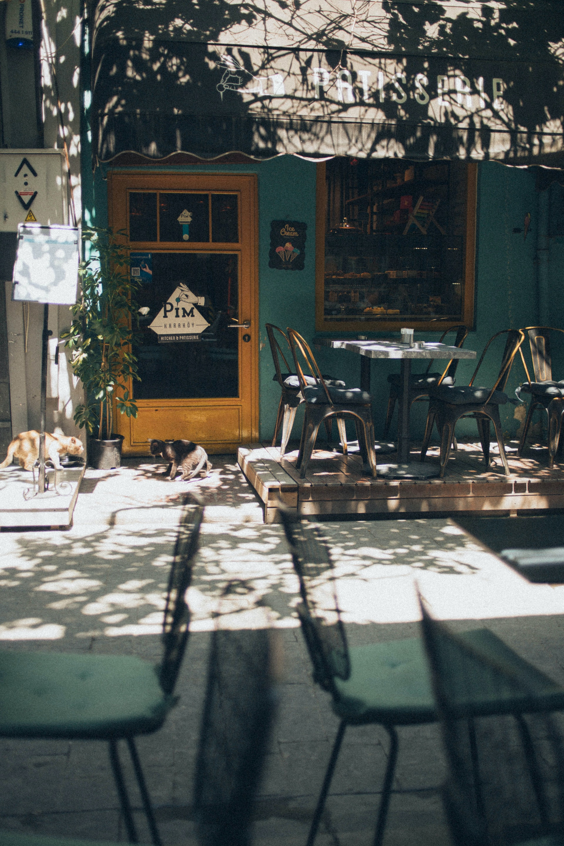 Exterior of street side cafe with two dogs and chairs
